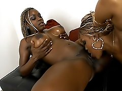Busty ebony babes licking slits