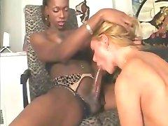 Beautiful Shemale Taking Black Cock Deep Down Her Throat