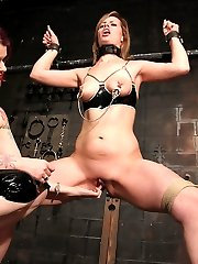 Strict Restraint Decvice Bondage Gallery