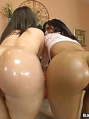 These asses are examened throughly