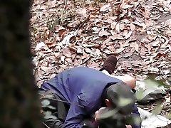 Serija šuma - šuma divlji