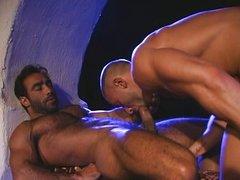 Orient Sex 4