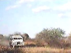African enormous penises !real safari!