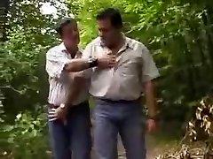 Mollige beren in het bos