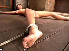 Spread eagle on the floor Matt pounces on this slut with an aggressive flogging all over her body getting it nice and pick until she begs to be tickled. She is tickled until she begs to be flogged. Her whole body writhes in the rope and her cunt raises high as she tries to escape the rope.Matt plays with her, taunts, her, gives her more predicaments to play with her. Then the vibrator comes in. He pounds her juicy inviting cunt with his fingers... teasing her, prolonging her pleasure and not letting her cum again and again. This is the cycle and we get to see how long she can endure this circuit training sadism.At the end of her ordeal Matt says simply