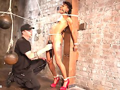 Take two of the most willing pain sluts, add rope and a sadistic fuck and you will have today's update. Mia and Nikki both have the desire to suffer at the hands of The Pope and will now do it together. They will be used against each other to increase the suffering and increase the orgasmic pleasure. They begin bound to columns across from each other and little by little they become more connected than they ever thought they could be. They share a crotch rope with extreme weight hanging from it, and their nipple clamps are tied together to ensure that when one of them moves the other feels it.  Next we have Nikki on her back with her legs spread and Mia tied in a position that has her sitting on Nikki's face. Nikki being the slut that she is can't help but to lick Mia's sweet pussy. The pain comes in the form of caning, bands and bastinado on both of these willing slaves.We finish the day with both whore mounted atop sybians. Both sluts start to orgasm uncontrollably, then they both get a massive helping of face fucking. They are constantly face fucked while orgasming against their will.