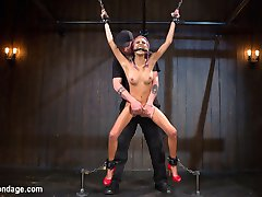 Janice is very new to our world of dark dungeons, bondage, domination, and submission. Shes very...