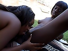 Black whores fucking each other039s cunts