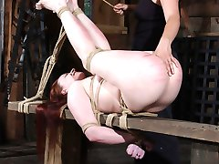 Sister Dee owes Claire Adams a bit of punishment. The last time they met Claire was a little...