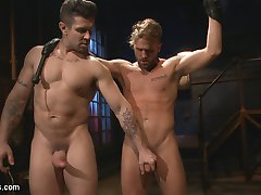 Trenton Ducati looks over his new, ungrateful plaything writhing on the floor, completely...