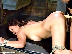 The very slutty LeiLani Li makes her debut at Whippedass with Isis Love. She gets off from being...