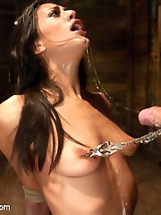 Lyla Storm is very excited about being used and fucked in hard bondage by Mark Davis. She is a...