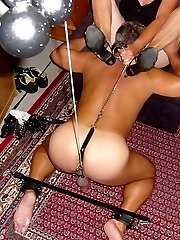 femdom cock and ball training