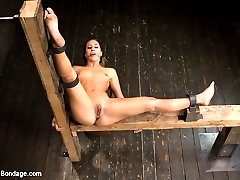 Andre Shatki is new to Device and at the hands of Mz Berlin, is sure to have a rough time....