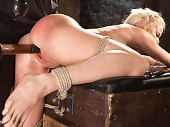 Welcome Nikki Delano to Hogtied.com. She is 5 ft. tall and stacked in all the right places. She...