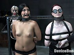 Claire Adams, Jade Indica and Sarah Jane Ceylon all take a long turn suffering and begging on...