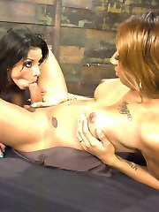 Honey has a missile in her panties and she is not afraid to use it! When Katrina playfully lets...