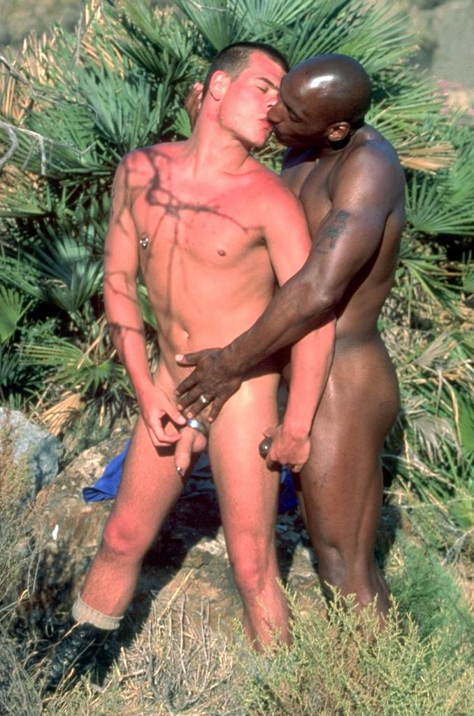 Interracial fun of gays outdoors