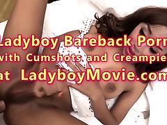 Gorgeous Ladyboy Pancake Bareback Fucked