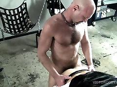 Pig Week Gorilla Porn Gay Group Sex Orgy