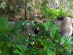 Amazing BBW video with Big Tits,Black and Ebony scenes