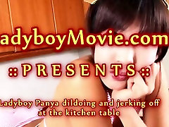 Ladyboy Panya Toying and Stroking